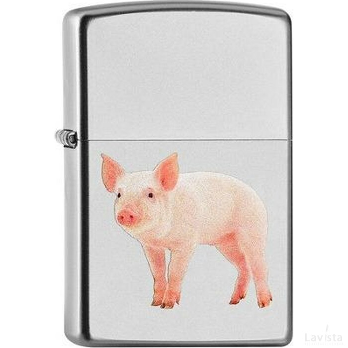 ZIPPO PIG ON STAGE